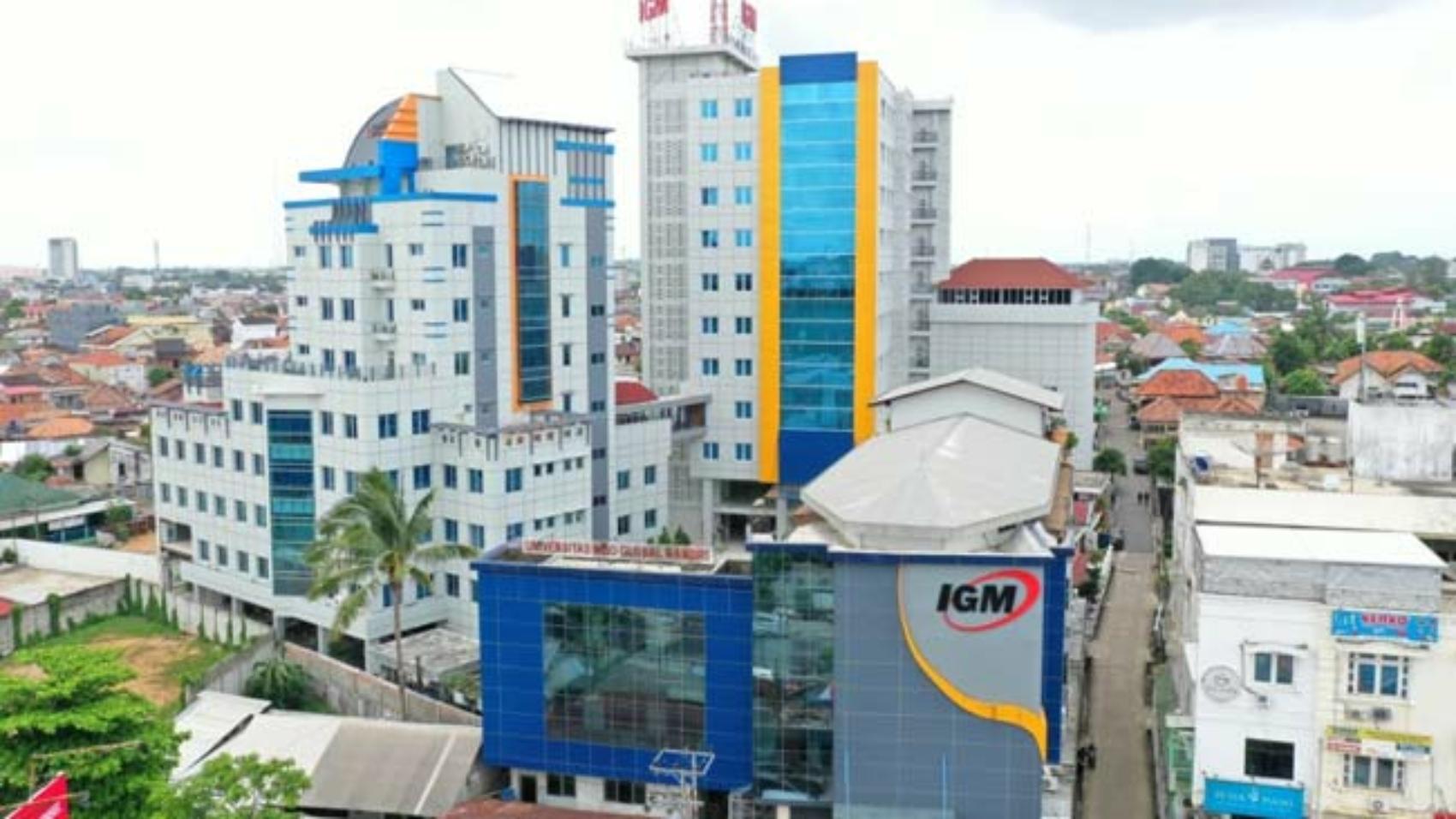 IGM1-1
